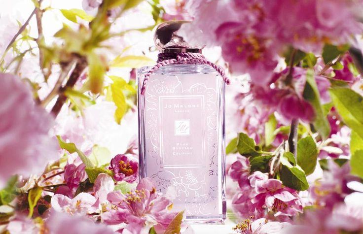 Jo Malone, Plum Blossom Fragrance