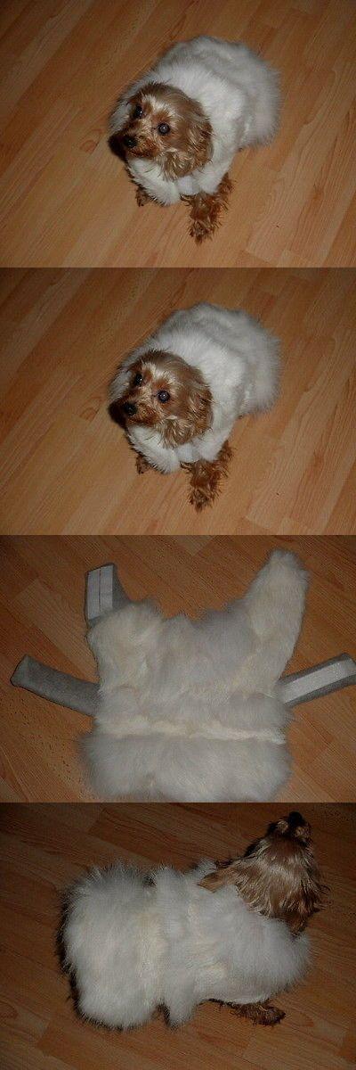 Pet Supplies: ~*~Small Pet Dog Coat Clothes S M~*~ Snowwhite BUY IT NOW ONLY: $99.99