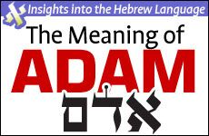 """The Meaning of """"Adam"""": Insights into the Hebrew Language"""