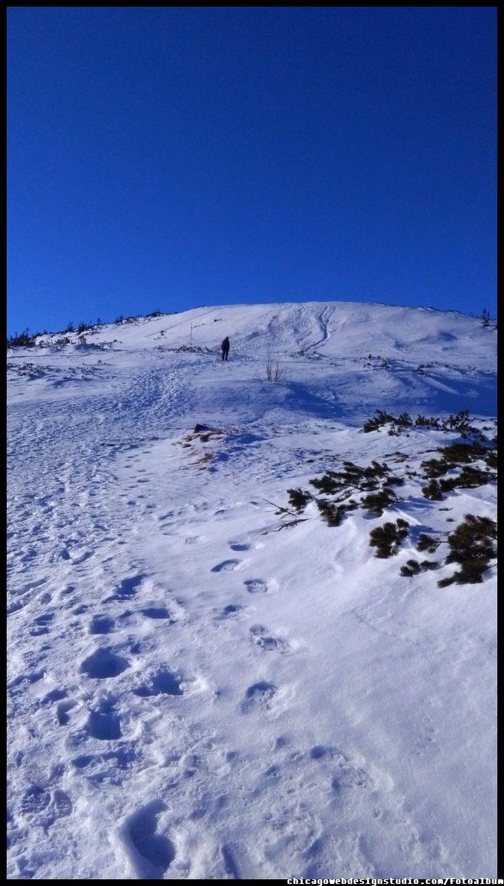 na Diablak #Babia Góra #Diablak #Beskidy #Babiogórski-Park-Narodowy #BPN #góry #Poland #Polska #mountains panorama-na-Tatry-z-Babiej Góry #Zawoja #szlaki_górskie #turystyka