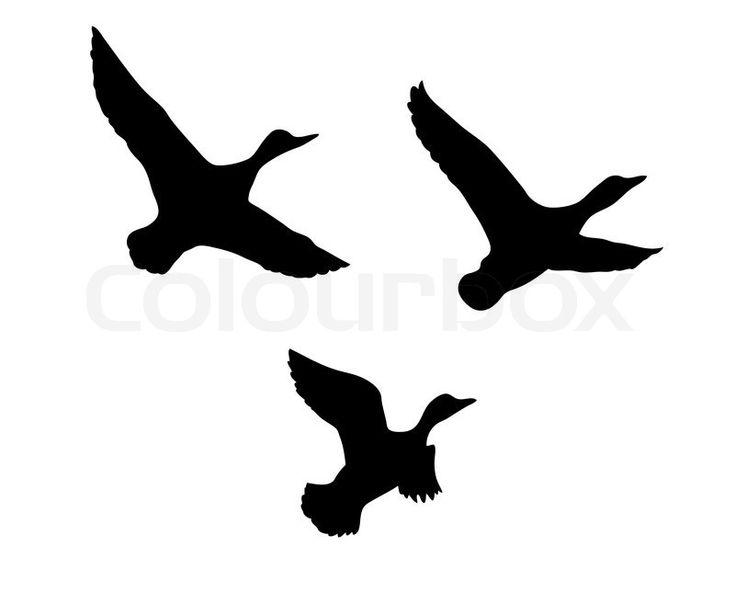 Stock vektor af 'Vektor silhuet flyvende ænder på hvid baggrund'