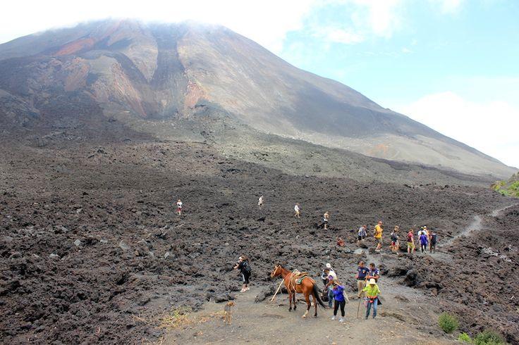 Lava Rock at Pacaya Volcano Guatemala - Cook marshmellows on a volcano