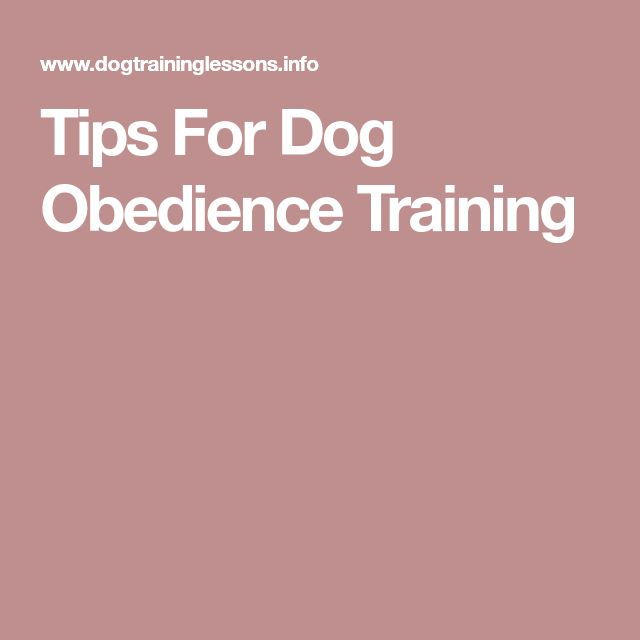 Tips For Dog Obedience Training #DogObedienceTipsandAdvice