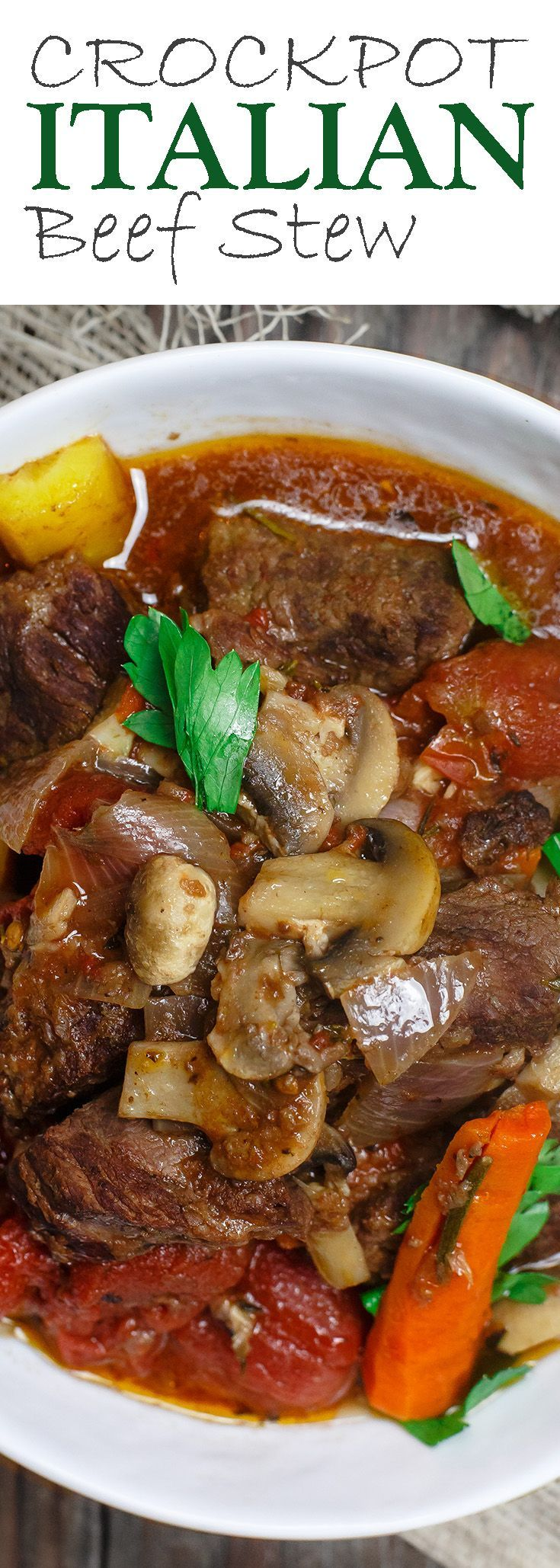 25 best ideas about beef stews on pinterest slowcooker for Crock pot fish stew