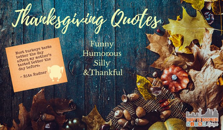 Thanksgiving Quotes - Funny, Humorous, Silly, and Thankful https://babytoboomer.com/2014/11/19/thanksgiving-quotes/