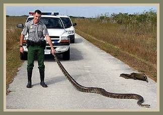 Park Rangers: They Said What?