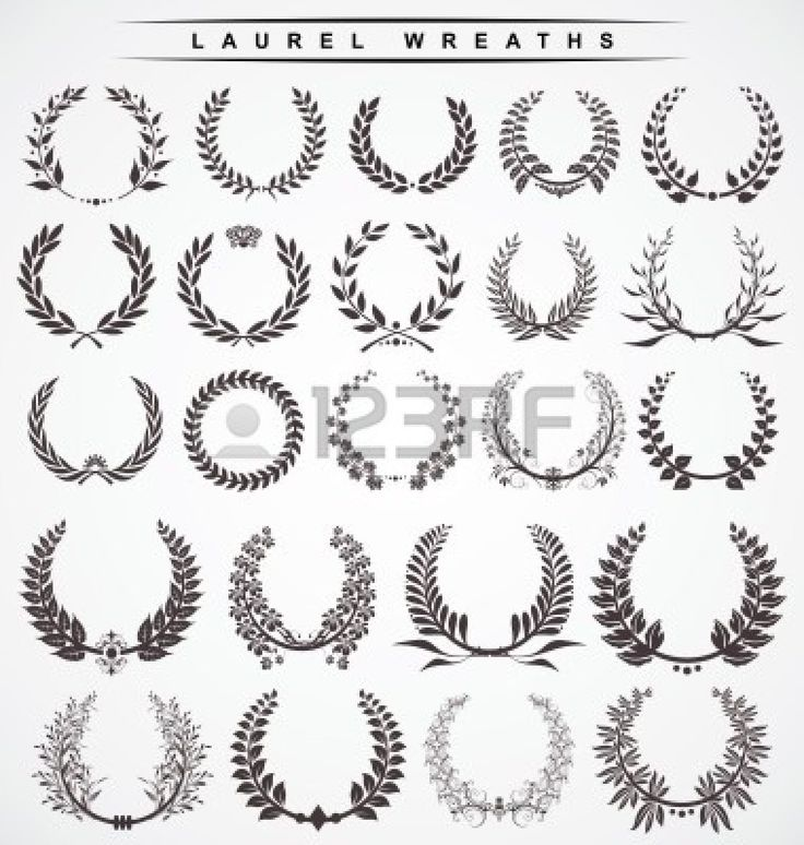 Corona De Laurel Imágenes De Archivo, Vectores, Corona De Laurel ...