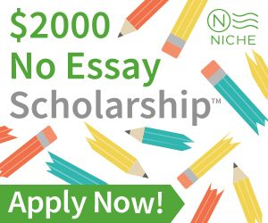 Niche 2000 no essay scholarship legit poemview co
