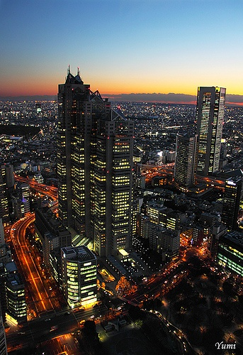 Twilight Shinjuku. I want to go see this place one day. Please check out my website thanks. www.photopix.co.nz