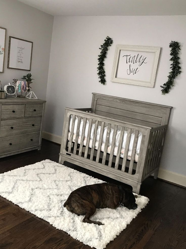 Simple Baby Boy Room Ideas: Love This But I Would Add Paper Flowers On The Wall Baby