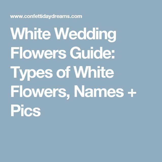 White Wedding Flowers Guide: Types of White Flowers, Names + Pics