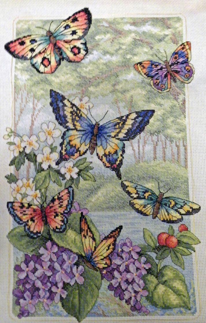 Butterfly Cross Stitch by Olcanna on deviantART