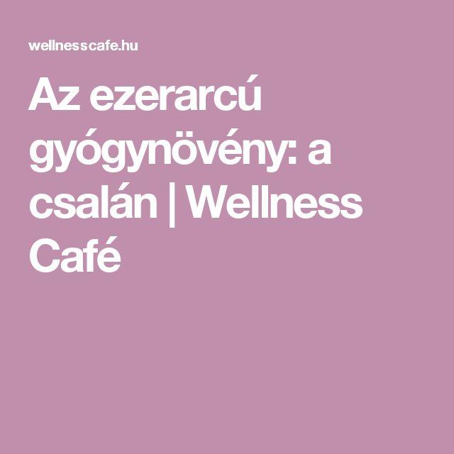 Az ezerarcú gyógynövény: a csalán | Wellness Café