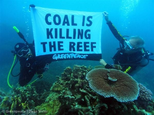 An underwater protest in the Great Barrier Reef, which is under threat from rising sea temperatures caused by climate change