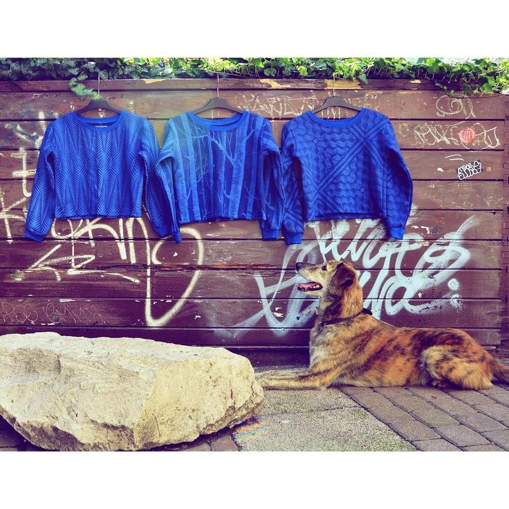 Get ready for the #weekend 🆒 #unique #blue #print #croptop #style #sweatshirt…