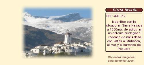 AND912 Capileira. La Alpujarra. Granada  Cortijo en venta o alquiler.