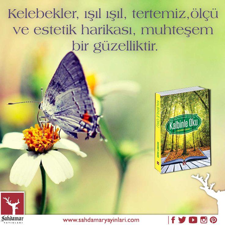 Kelebeğe bakınca ne görüyorsunuz? Kalbinle Oku: Detaylı bilgi için: http://www.kitapkaynagi.com/product/sahdamar-yayinlari/kalbinle-oku #şahdamar #sahdamar #şahdamaryayınları #sahdamaryayınları #book #kitap #kalbinleoku #kelebek #uçmak #kelebekler #sanat #doğa #harika #canlı