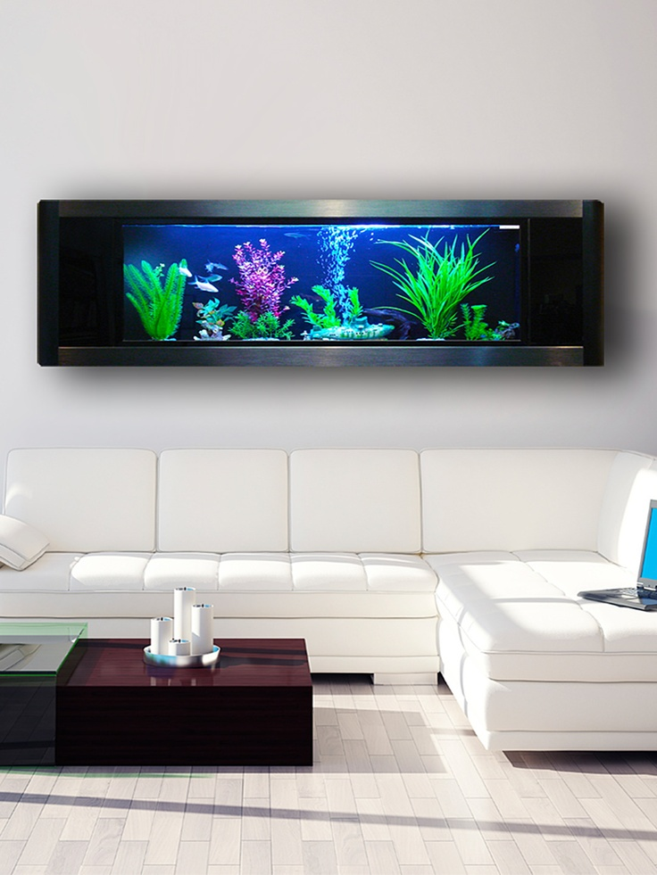 124 best Modern Design Aquariums images on Pinterest | Aquariums ...