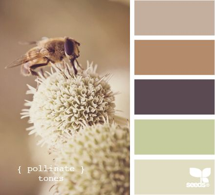 Pollinate Tones // Design Seeds; really wonderful fair isle color palette