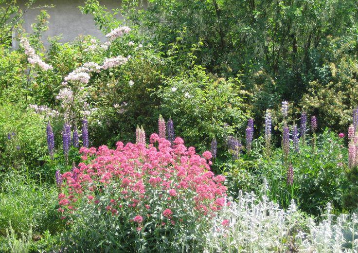 Jak si navrhnout zahradu