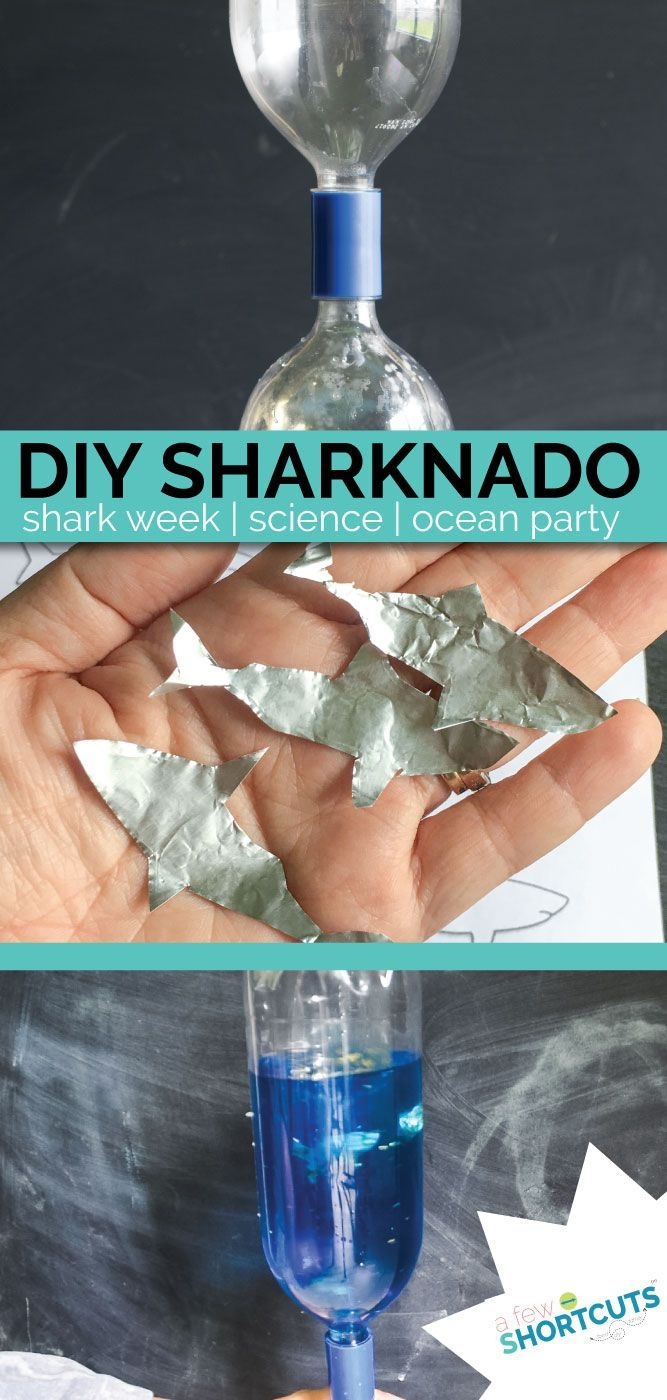 Looking for a fun shark week project to do with the kids? Check out this DIY Sharknado! A quick easy science project for the kids.