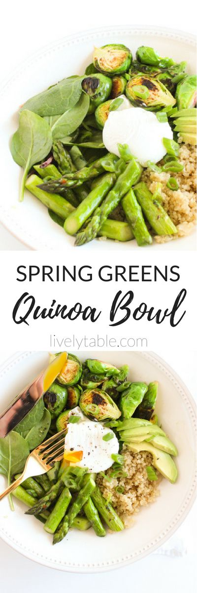 Say hello to spring with a healthy Spring Greens Quinoa Bowl filled with nourishing green vegetables, quinoa, avocado and an oozing poached egg! (gluten-free, dairy-free, vegetarian) via livelytable.com