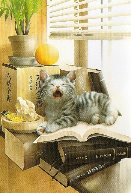 Muramatsu Cat 6--Not available | Flickr - Photo Sharing!