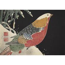 伊藤若冲: Copper Pheasant, no. 1 from the series Six Genuine Pictures by Ito Jakuchu - ウィスコンシン大学マディソン校