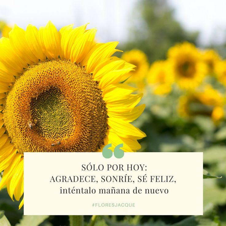 Sólo por Hoy Sé Feliz #floresjacque #motivation #frasedeldia #transportamosfelicidad