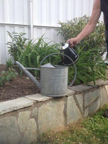 Die 25+ Besten Ideen Zu Unkrautvernichtung Auf Pinterest ... Bodenverbesserung Garten Mittel Tipps