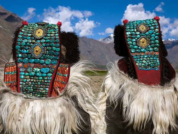 Rough-cut turquoise stones adorn the headdresses of two women in Ladakh, a remote Himalayan region. Long, heavy robes are worn by men and women alike.  http://www.thrillophilia.com/ladakh.php