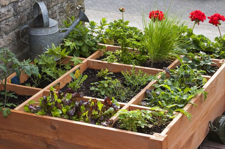270 Best Images About Raisedbeds Vertical Gardening Or 640 x 480