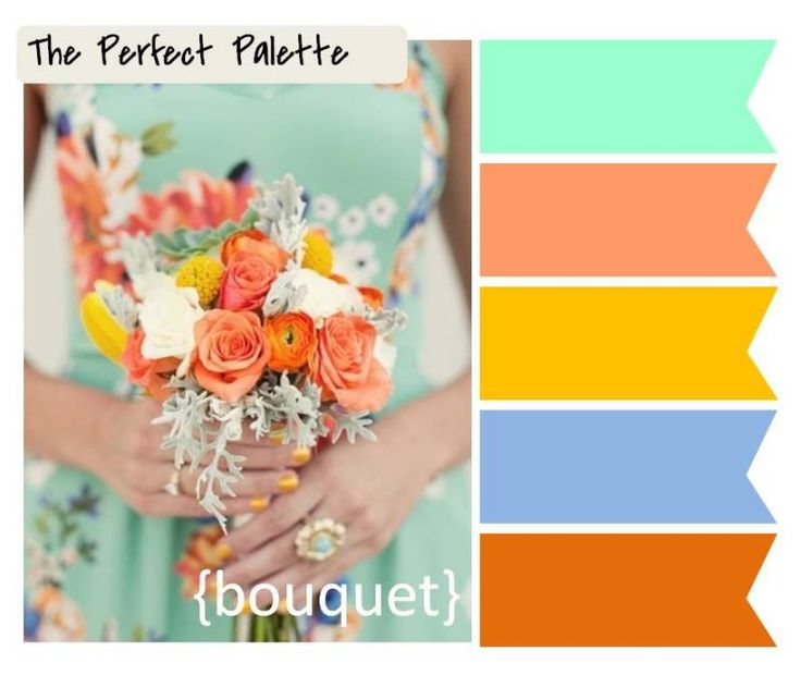 130 best images about perfect palettes on pinterest - Peach color paint palette ...