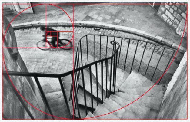 http://erickimphotography.com/blog/wp-content/uploads/2013/03/hcb-bicycle.png