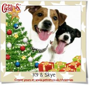 K9 & Skye