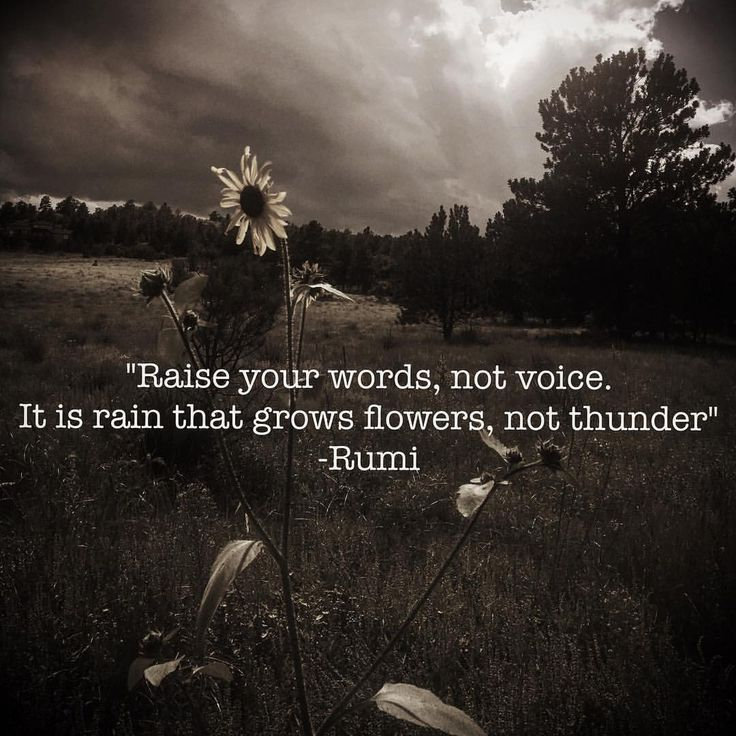 """""""Raise your words, not voice. It is rain that grows flowers, not thunder"""" -Rumi * * Instead of using heartbreak to close our hearts— let's use our emotions to open our perspective. To propel us. To make us better. To shift how we show up."""