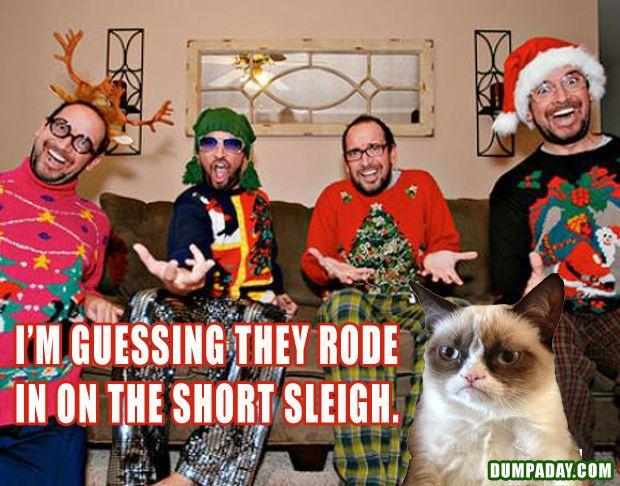 grumpy cat, funny christmas pictures, dumpaday