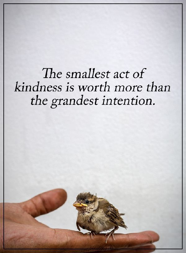 awesome Kindness Quotes: Why Kindness Worth More than Grandest Intention