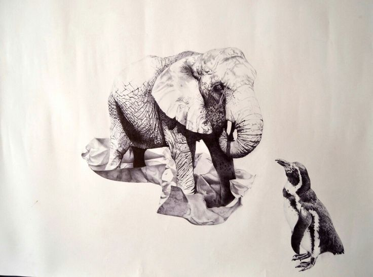 Ball point pen drawing #art#drawing