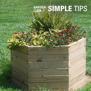 Build a raised planter customized to conceal a septic tank cover or any unsightly fixture in your landscape. Follow this DIY for step by step instructions.