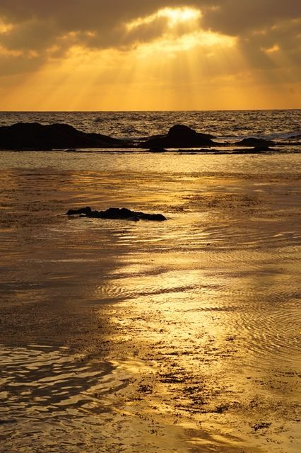 【景勝地】弁天崎沖合に浮かぶ黄金色に染まる岩石島。相川千畳敷 : 佐渡旅(sadotabi)