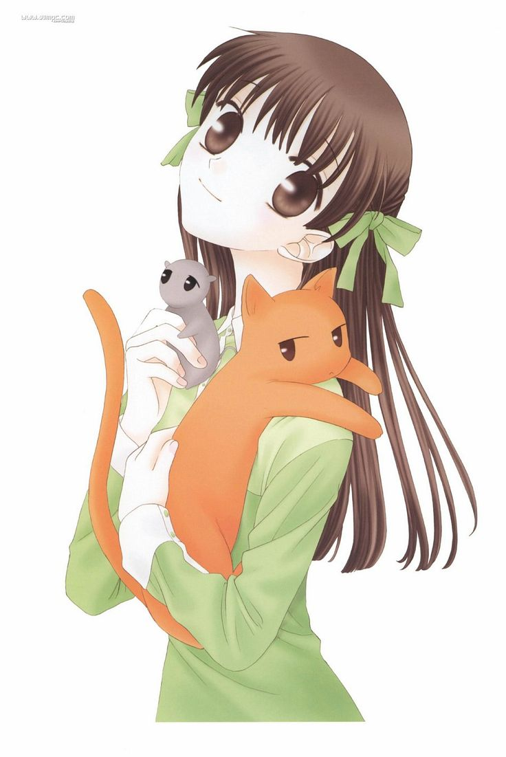I love the show Fruits Basket so much! It is the sweetest anime I've ever watched