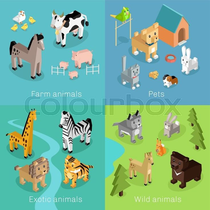 Stock vector of 'Wild exotic and farm animal set isometric. Pet dog bird, animals vector, cartoon animals, cat and lion, horse and tropical wildlife, mammal creature illustration. Isometric animal set'