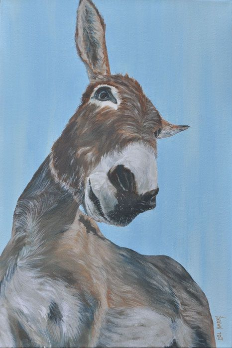 Noah the donkey  (oil on canvas, 600X400mmX45mm) by Lisl Barry   www.lislbarry.co.za  Little Karoo animals
