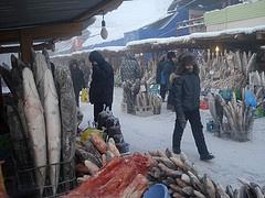 Farmers' fish market. Yakutsk, Yakutia/Siberia, Russia