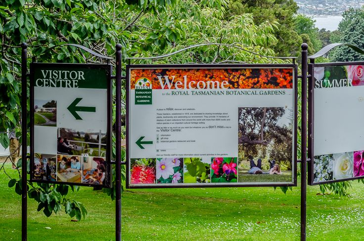 Travel blog: Your guide to the Royal Botanical Gardens- Hobart, Tasmania