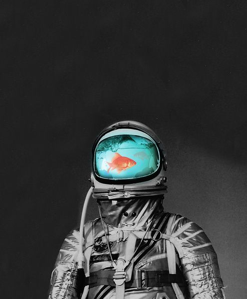 Astronaut fish bowl