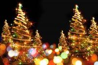 Το χριστουγεννιάτικο δέντρο καθιερώθηκε εξ ολοκλήρου και μαζί με τον Άη-Βασίλη είναι ένα από τα κύρια χριστουγεννιάτικα εφέ. Αναμφισβήτητα το δέντρο αποτελεί ένα από τα πιο όμορφα χριστουγεννιάτικα έθιμα. Σε κάθε σπίτι έχει καθιερωθεί ο στολισμός του και οι συμβολισμοί μαζί με τα νοήματά του πολλά. Στην βάση του τοποθετείται συνήθως μια φάτνη που αναπαριστά τη γέννηση του Χριστού ενώ στην κορφή υπάρχει το αστέρι της Βηθλεέμ που οδήγησε τους μάγους στο θειο βρέφος.
