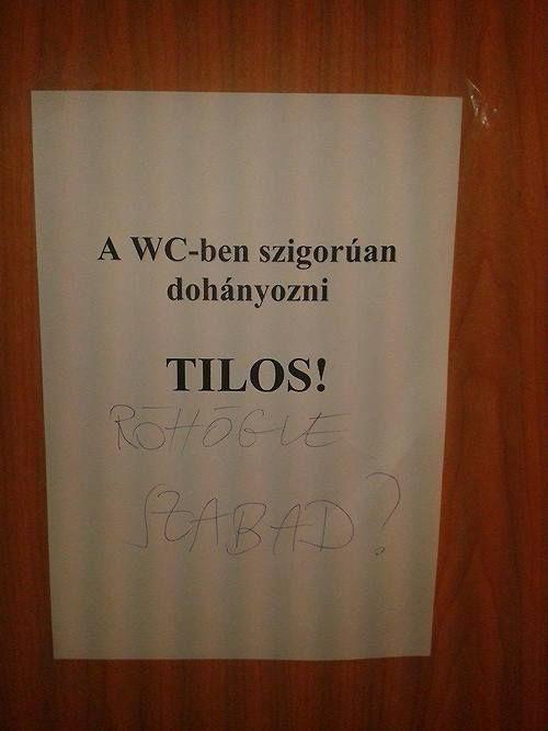 A nap trollja: üzenet a WC-ből