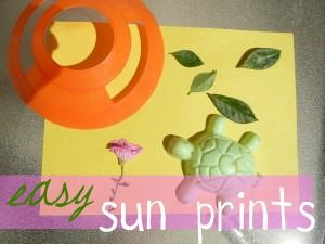 using nature to create art…SUN prints {amomwithalessonplan}